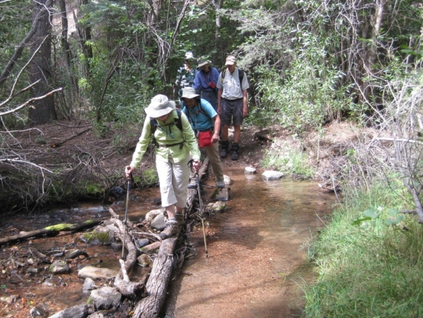 Tesuque Creek to Chamisa Trail